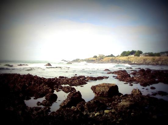 Sea Ranch2