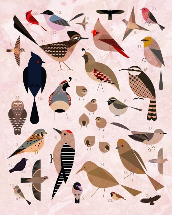 Bird by Bird collage