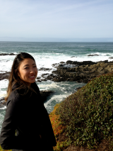 Travelogue: Sea Ranch, February 2014