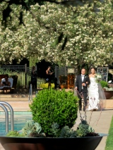 A Wedding at Calistoga Ranch